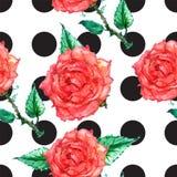 Polka dot ornament Royalty Free Stock Image
