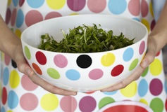 Polka dots bowl of dandelion salad and apron Stock Photo