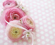 Polka dots and pink flowers Stock Images