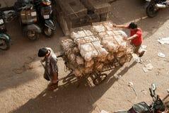Pollame indiano Fotografie Stock Libere da Diritti