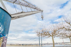 Pollard willow tree and crane. In Duesseldorf, Germany Royalty Free Stock Photography