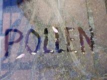 pollen Photos libres de droits