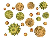 Pollen stock illustration