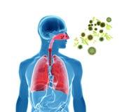 Pollen allergy / Hay fever/ Influenza infection. 3d rendering illustration of pollen, virus or influenza infection stock illustration