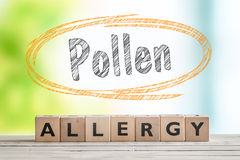 Pollen allergy headline with a wooden sign. On a nature background Stock Images