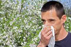 Pollen allergy, Springtime. Man sneezing in a tissue Royalty Free Stock Image