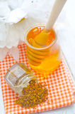 Pollen et miel Image libre de droits