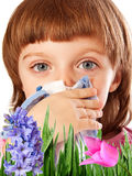 Pollen fever allergy Stock Photo