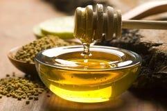 Pollen frais de miel et d'abeille Photographie stock libre de droits