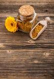 Pollen granules Stock Image