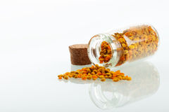 Pollen granules in small medicine bottle Royalty Free Stock Images