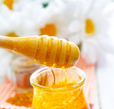 Pollen and honey Royalty Free Stock Image