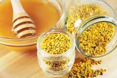 Pollen i miód Fotografia Royalty Free