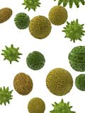 Pollen particles - close up Stock Images