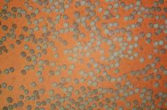 Pollen - photo microscopique de microscope photographie stock