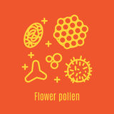 Pollen, a product of bees and beekeeping. A useful organic amino acid. Linear style. Vector illustration Royalty Free Stock Image