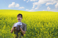 Pollenallergie lizenzfreie stockfotografie