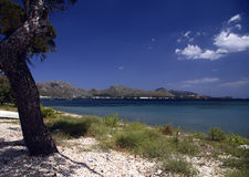 Pollensa beach. In the Balearic islands Royalty Free Stock Image