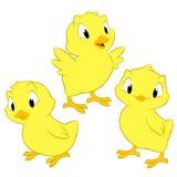 Polli del fumetto Immagini Stock