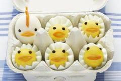 Polli dell'uovo sodo in scatola delle uova Fotografie Stock Libere da Diritti