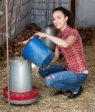 Polli di trasporto dell'agricoltore felice della giovane donna Fotografia Stock Libera da Diritti