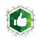 Pollici su come il bottone floreale di esagono di verde del modello delle piante dell'icona royalty illustrazione gratis