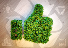 Pollici verdi su con le icone di eco Fotografia Stock