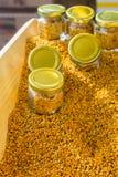Polline dell'ape come alimento crudo organico sano in barattolo immagini stock libere da diritti