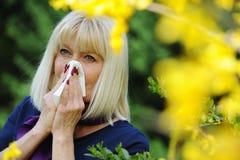 Polline senior di allergia della donna Fotografie Stock Libere da Diritti