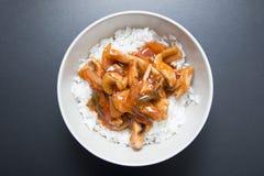 Pollo agrodolce con riso Fotografia Stock Libera da Diritti