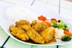 Pollo al curry con arroz Fotografía de archivo