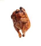 Pollo arrostito con una crosta dorata e croccante Immagine Stock