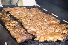 Pollo arrostito piccante di scatto sul barbecue immagini stock libere da diritti