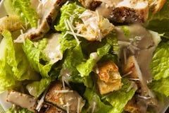 Pollo arrostito sano Caesar Salad Immagine Stock