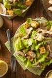 Pollo arrostito sano Caesar Salad Immagini Stock
