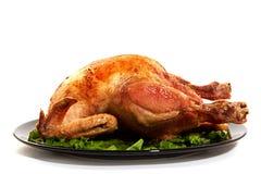 Pollo arrostito su fondo bianco fotografie stock