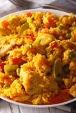 Pollo Arroz con - ρύζι με το κοτόπουλο σε μια μακροεντολή κύπελλων κάθετος Στοκ Εικόνα