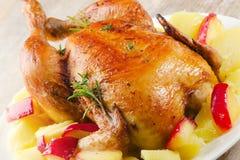 Pollo asado Imagen de archivo libre de regalías