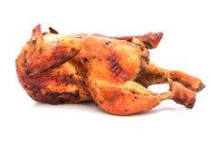 Pollo asado de la pimienta negra aislado en el fondo blanco Fotos de archivo