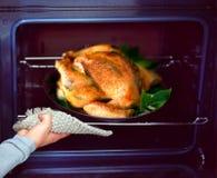 Pollo asado a la parilla Imagen de archivo libre de regalías