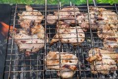 Pollo asado a la parrilla en carbones Foto de archivo