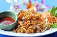 Pollo asciutto fritto con la salsa di pomodori Immagini Stock