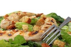 Pollo Caesar di Crilled Fotografie Stock