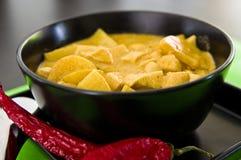 Pollo casalingo con la salsa di curry, ricetta tailandese Fotografie Stock Libere da Diritti