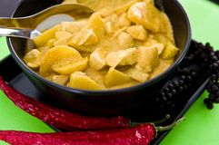 Pollo casalingo con la salsa di curry, ricetta tailandese Fotografia Stock Libera da Diritti