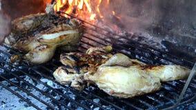 Pollo cepillado con Olive Oil almacen de video