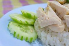 Pollo chino asiático del vapor del estilo de la comida del primer con arroz y el sa Imagenes de archivo