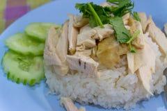 Pollo chino asiático del vapor del estilo de la comida del primer con arroz y el sa Fotos de archivo libres de regalías