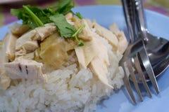 Pollo chino asiático del vapor del estilo de la comida del primer con arroz y el sa Foto de archivo libre de regalías