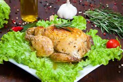 Pollo cocido con la ensalada Fotos de archivo